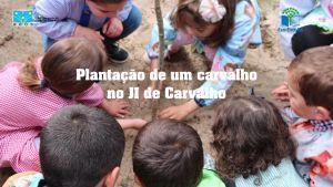 b_300_200_16777215_00_images_Ano_letivo_20-21_3P_Thumbnail.jpg